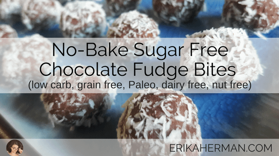 No Bake Sugar Free Chocolate Fudge Bites Recipe