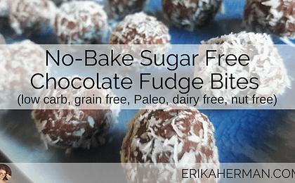 No Bake Sugar Free Chocolate Fudge Bites Recipe